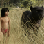 The Jungle Book star: who is Neel Sethi