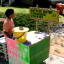 Nine-Year-Old Raises Money For Own Adoption With Homemade Lemonade And Cookie Stand