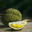 Eating durian during pregnancy: what you should know