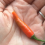 Child Ate What He Thought Was A Baby Carrot, Instantly Regretted It