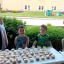 Creative Gender Reveal: Brothers Smash Cupcakes To Find Out If They'll Have A Brother Or Sister