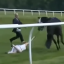 TV Presenter Hayley Moore Tackles Runaway Horse At Chepstow In 'Partridge'-Esque Scenes