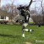 Boston Dynamics Has Made That 'Black Mirror' Robot Chase Scene A Reality