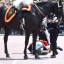 Trooping The Colour Accident Sees Former Head Of The Armed Forces Thrown From His Horse
