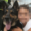 Colombian Gang Put £50K Bounty On Sniffer Dog's Head After She Finds 10 Tonnes Of Cocaine