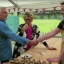 'Great British Bake Off': Is Paul Hollywood Giving Out Too Many Handshakes This Series?