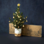 You Can Now Post Your Friends A Christmas Tree That Fits Through A Letter Box
