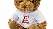 NEW – BEST SON IN THE WORLD – Teddy Bear – Cute Soft Cuddly – Award Gift Present Birthday Xmas